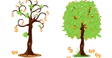 illustration of dollar trees showing profit and loss